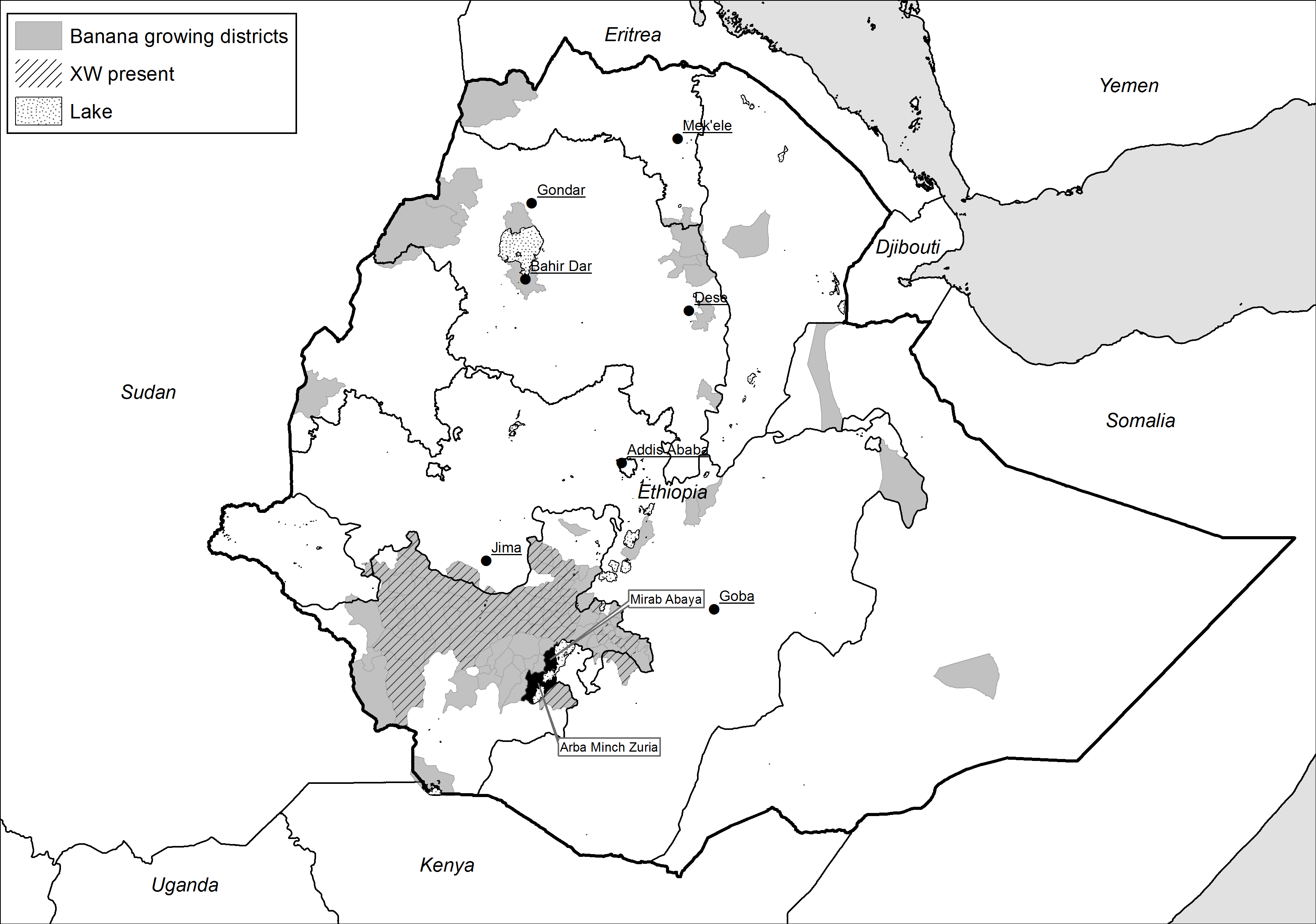 Map of banana and disease distribution in Ethiopia
